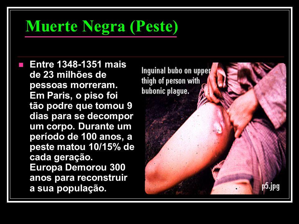 Muerte Negra (Peste) Entre 1348-1351 mais de 23 milhões de pessoas morreram. Em Paris, o piso foi tão podre que tomou 9 dias para se decompor um corpo