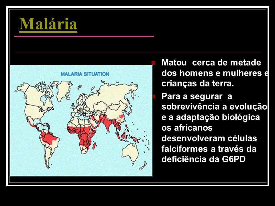 Malária Matou cerca de metade dos homens e mulheres e crianças da terra. Para a segurar a sobrevivência a evolução e a adaptação biológica os africano