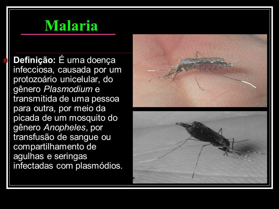 Malaria Definição: É uma doença infecciosa, causada por um protozoário unicelular, do gênero Plasmodium e transmitida de uma pessoa para outra, por me