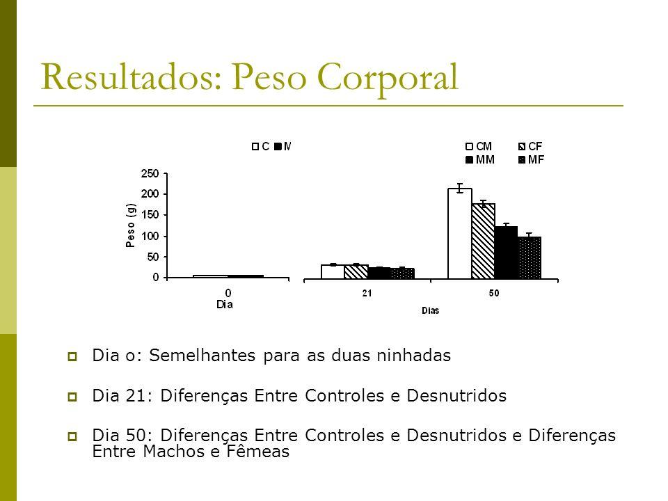 Resultados: Peso Corporal Dia o: Semelhantes para as duas ninhadas Dia 21: Diferenças Entre Controles e Desnutridos Dia 50: Diferenças Entre Controles