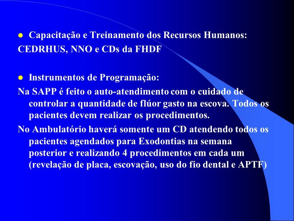 l Recursos Humanos e Competências: Auxiliares em todos os horários (7:00 as 19:00h), na SAPP, 1 CD (sexta-feira a tarde) do HRP realizando atividades
