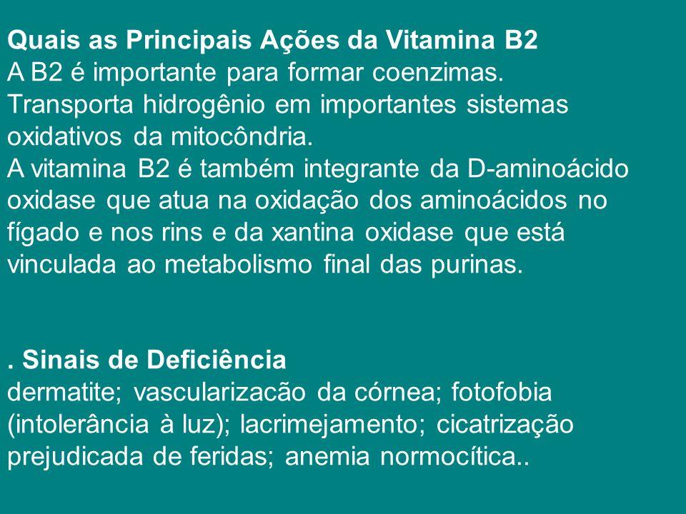 Quais as Principais Ações da Vitamina B2 A B2 é importante para formar coenzimas.