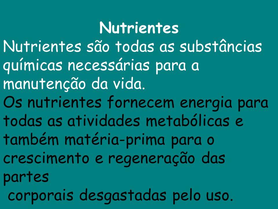 Nutrientes Nutrientes são todas as substâncias químicas necessárias para a manutenção da vida.
