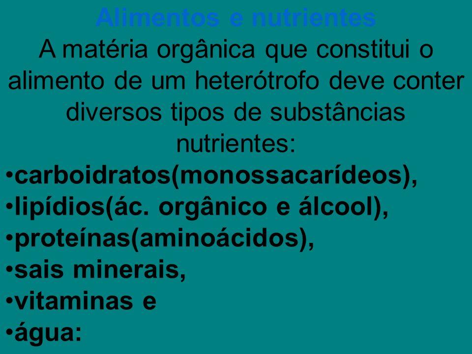Alimentos e nutrientes A matéria orgânica que constitui o alimento de um heterótrofo deve conter diversos tipos de substâncias nutrientes: carboidratos(monossacarídeos), lipídios(ác.
