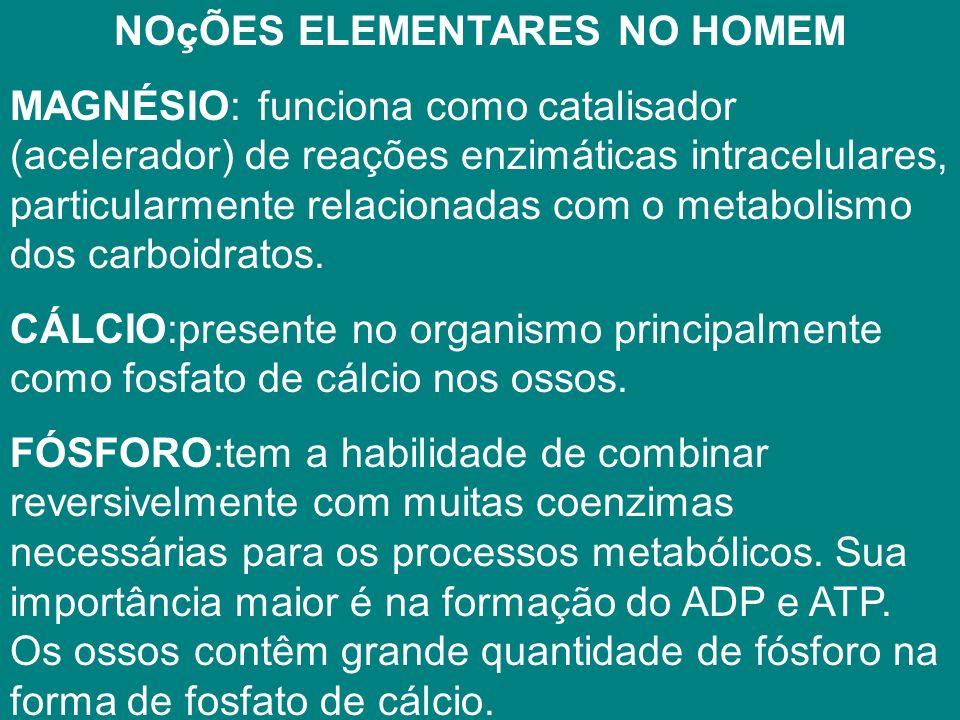 NOçÕES ELEMENTARES NO HOMEM MAGNÉSIO: funciona como catalisador (acelerador) de reações enzimáticas intracelulares, particularmente relacionadas com o metabolismo dos carboidratos.