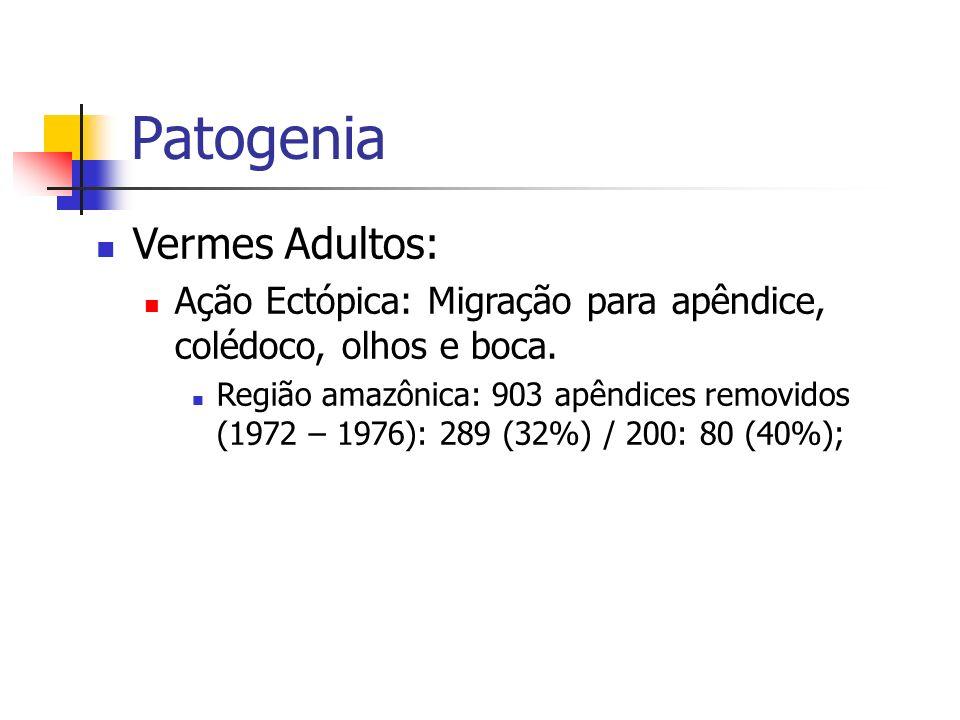 Patogenia Vermes Adultos: Ação Ectópica: Migração para apêndice, colédoco, olhos e boca. Região amazônica: 903 apêndices removidos (1972 – 1976): 289