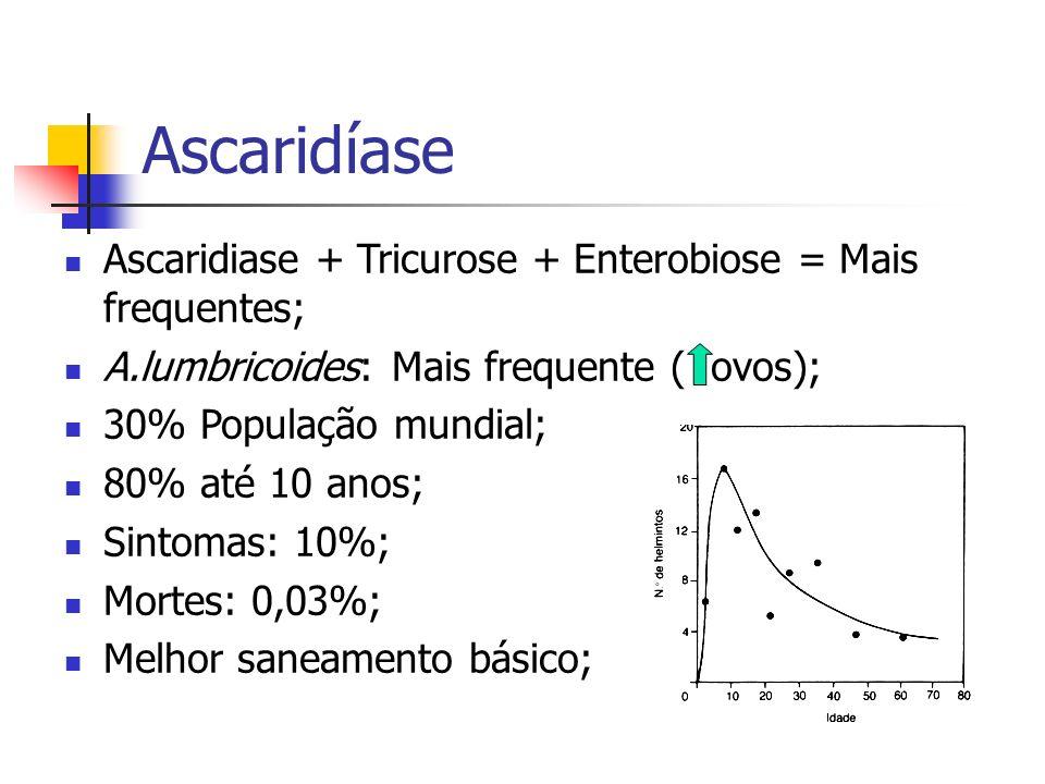 Ascaridíase Ascaridiase + Tricurose + Enterobiose = Mais frequentes; A.lumbricoides: Mais frequente ( ovos); 30% População mundial; 80% até 10 anos; S