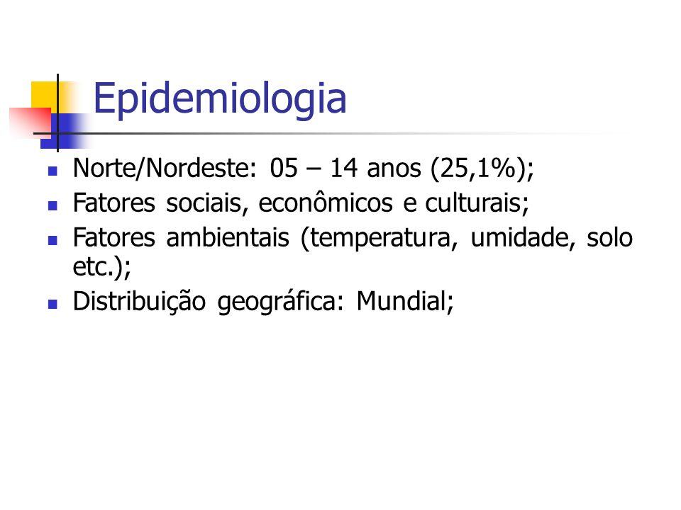 Epidemiologia Norte/Nordeste: 05 – 14 anos (25,1%); Fatores sociais, econômicos e culturais; Fatores ambientais (temperatura, umidade, solo etc.); Dis