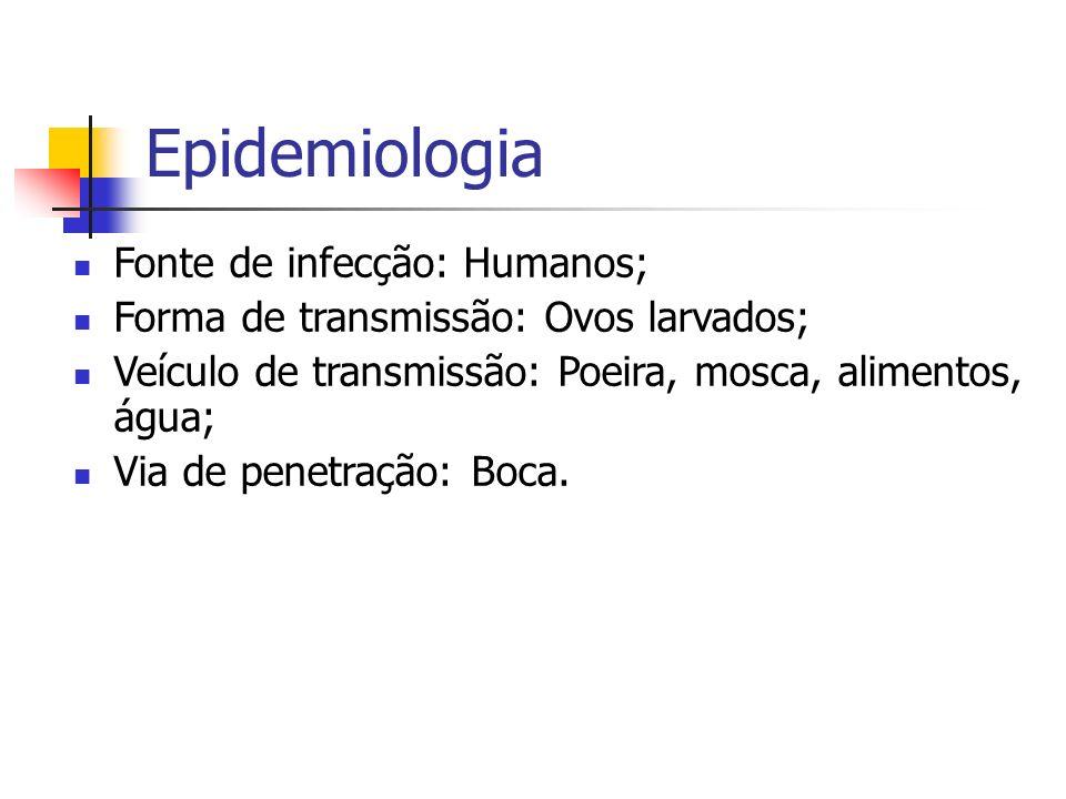 Epidemiologia Fonte de infecção: Humanos; Forma de transmissão: Ovos larvados; Veículo de transmissão: Poeira, mosca, alimentos, água; Via de penetraç