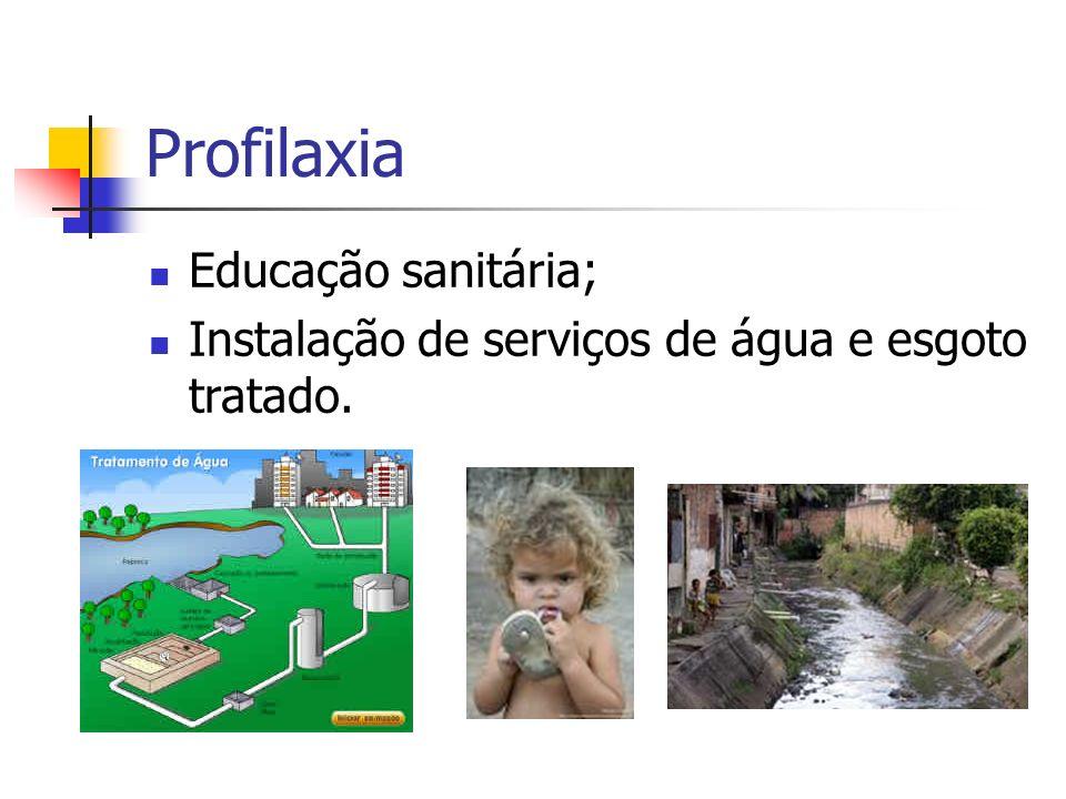 Profilaxia Educação sanitária; Instalação de serviços de água e esgoto tratado.