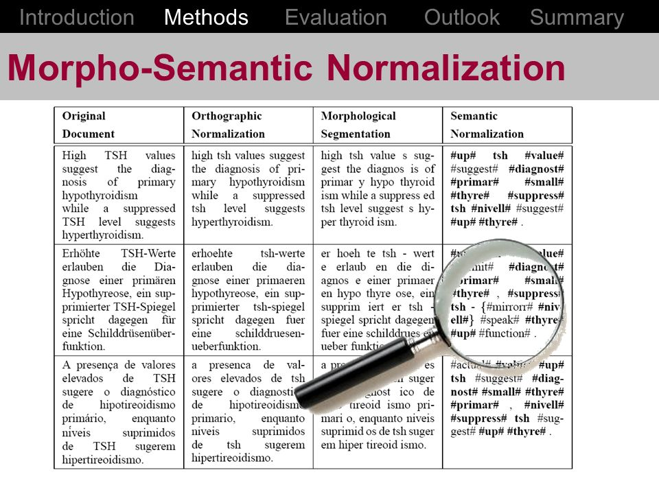 Morpho-Semantic Normalization Introduction Methods Evaluation Outlook Summary