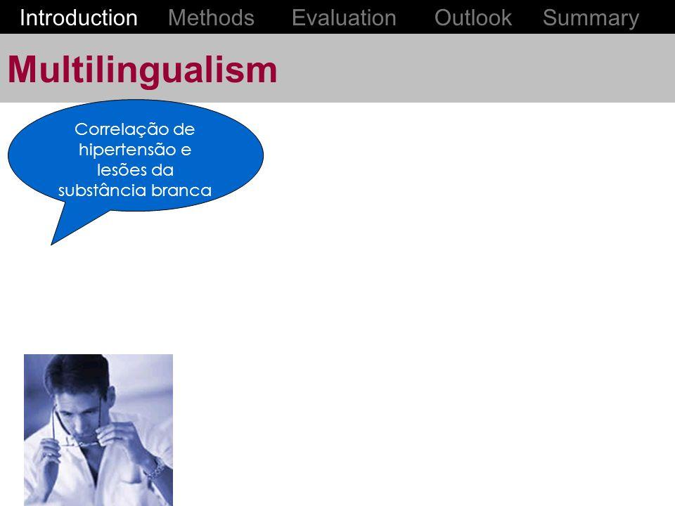 Multilingualism Correlação de hipertensão e lesões da substância branca Introduction Methods Evaluation Outlook Summary