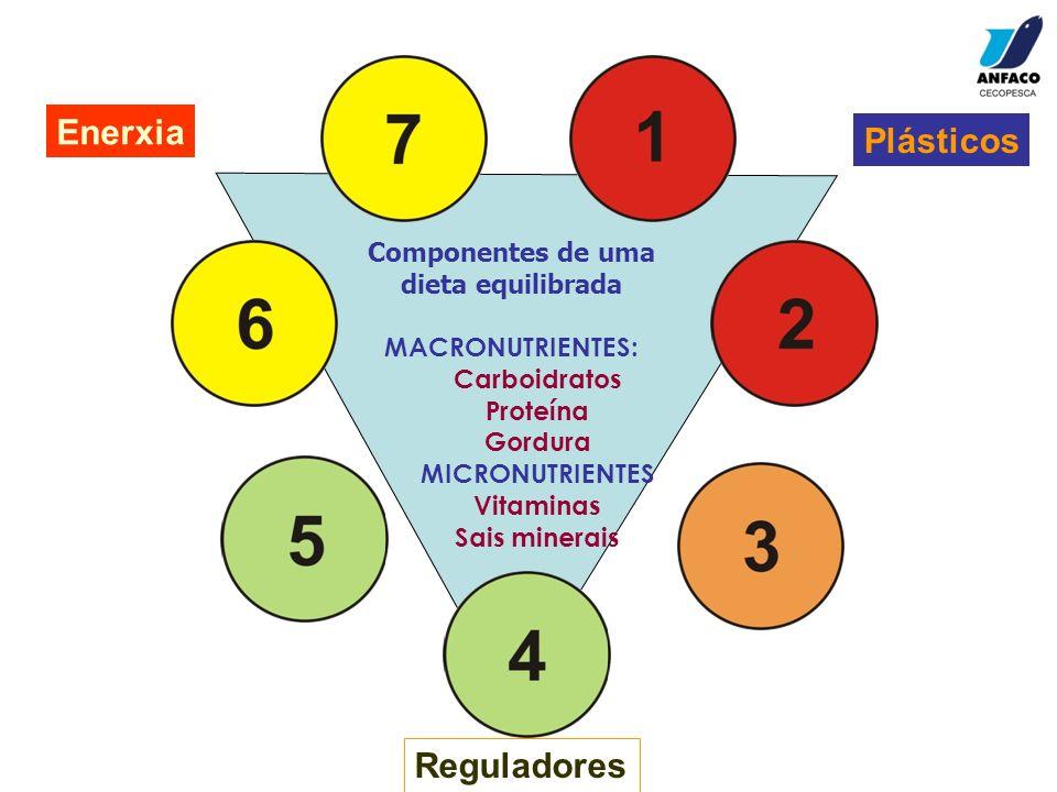 Plásticos Reguladores Enerxia Componentes de uma dieta equilibrada MACRONUTRIENTES: Carboidratos Proteína Gordura MICRONUTRIENTES Vitaminas Sais miner