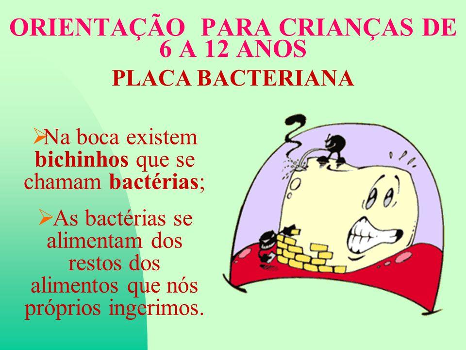 ORIENTAÇÃO PARA CRIANÇAS DE 6 A 12 ANOS PLACA BACTERIANA Na boca existem bichinhos que se chamam bactérias; As bactérias se alimentam dos restos dos alimentos que nós próprios ingerimos.