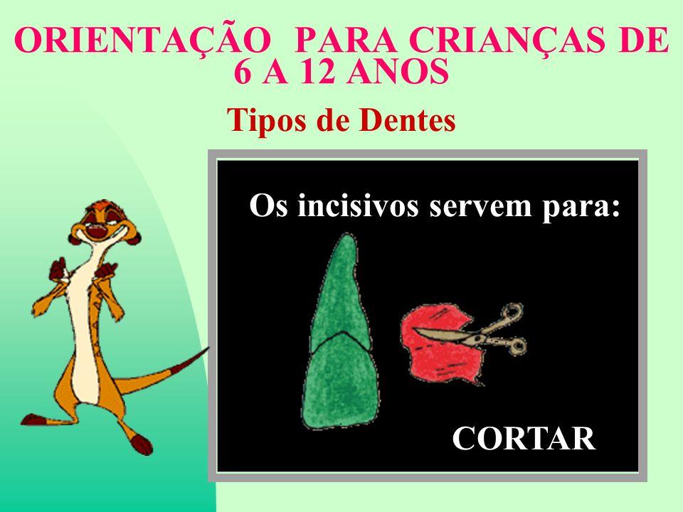 ORIENTAÇÃO PARA CRIANÇAS DE 6 A 12 ANOS Tipos de Dentes Os incisivos servem para: CORTAR
