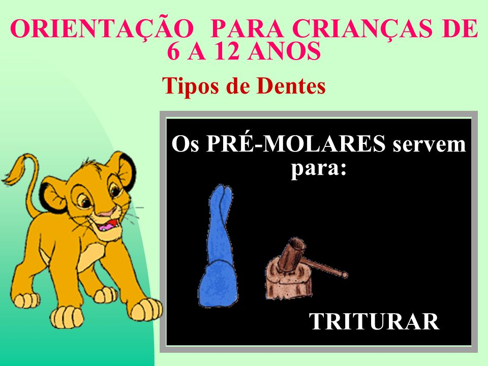 ORIENTAÇÃO PARA CRIANÇAS DE 6 A 12 ANOS Tipos de Dentes Os PRÉ-MOLARES servem para: TRITURAR
