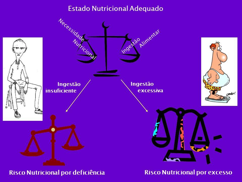 Ingestão Alimentar Necessidade Nutricional Estado Nutricional Adequado Ingestão excessiva Ingestão insuficiente Risco Nutricional por excesso Risco Nu