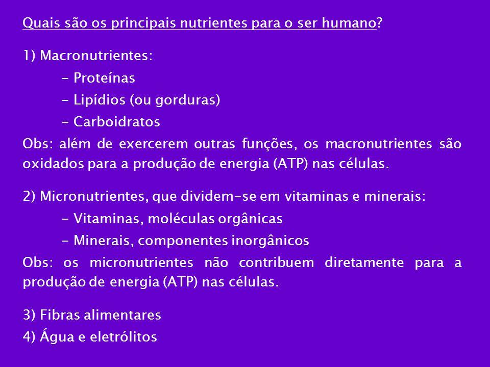 Quais são os principais nutrientes para o ser humano? 1) Macronutrientes: - Proteínas - Lipídios (ou gorduras) - Carboidratos Obs: além de exercerem o