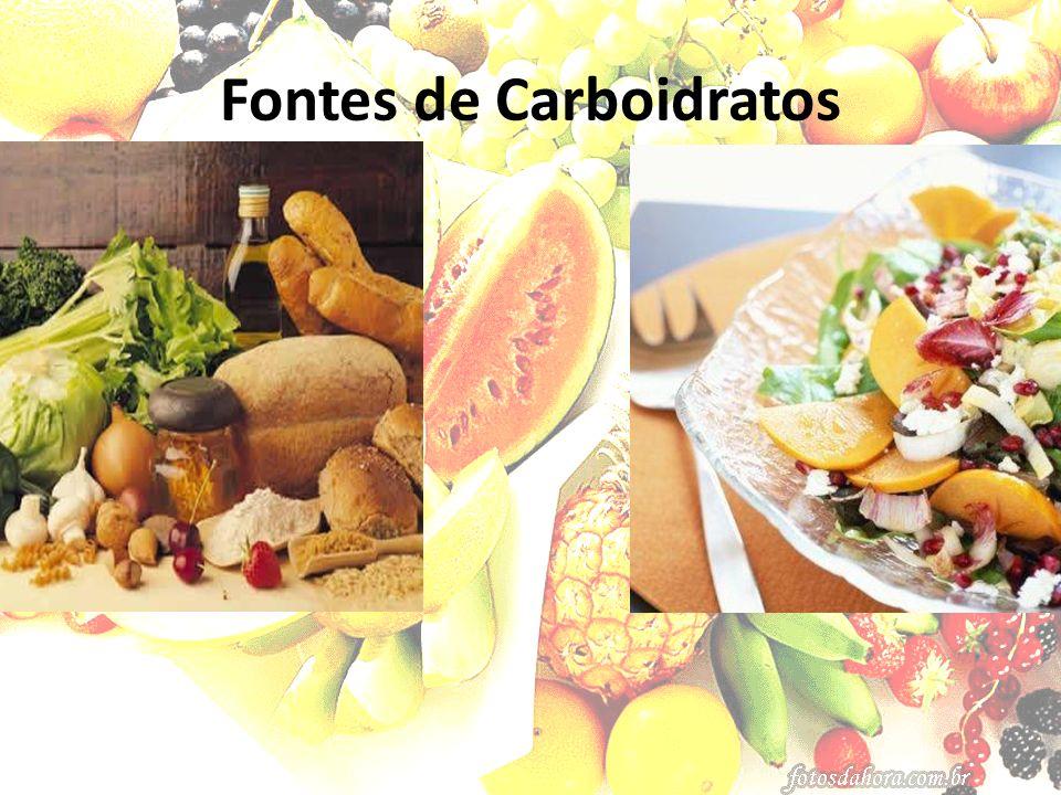 Carboidratos Monossacarídeos – galactose e frutose Dissacarídeos – maltose, sacarose e lactose Polissacarídeos – amido e açúcares