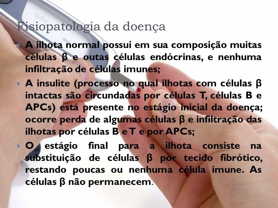 Fisiopatologia da doença A ilhota normal possui em sua composição muitas células β e outas células endócrinas, e nenhuma infiltração de células imunes