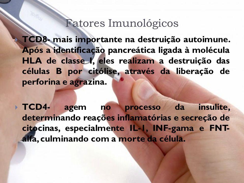 Fatores Imunológicos TCD8- mais importante na destruição autoimune. Após a identificação pancreática ligada à molécula HLA de classe I, eles realizam