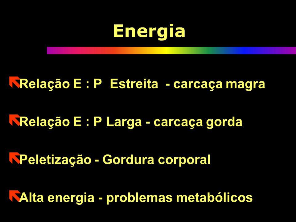 Energia ë Relação E : P Estreita - carcaça magra ë Relação E : P Larga - carcaça gorda ë Peletização - Gordura corporal ë Alta energia - problemas met
