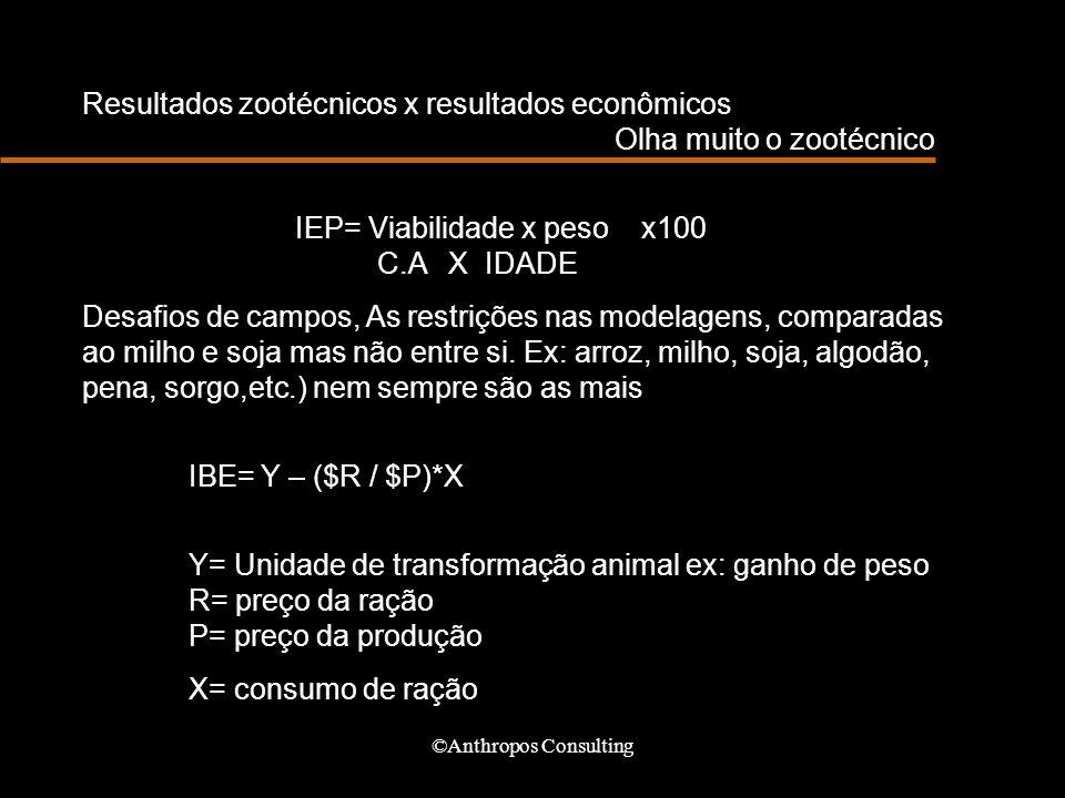 ©Anthropos Consulting Resultados zootécnicos x resultados econômicos Olha muito o zootécnico IEP= Viabilidade x peso x100 C.A X IDADE Desafios de camp