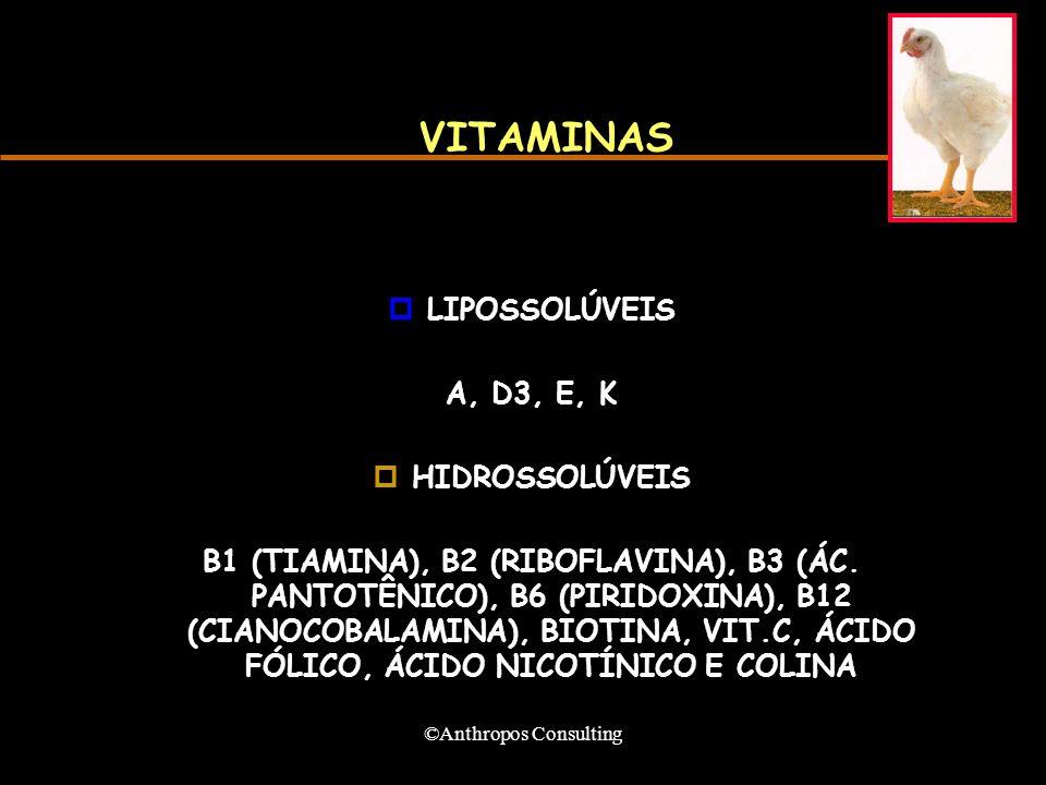 ©Anthropos Consulting VITAMINAS pLIPOSSOLÚVEIS A, D3, E, K pHIDROSSOLÚVEIS B1 (TIAMINA), B2 (RIBOFLAVINA), B3 (ÁC.