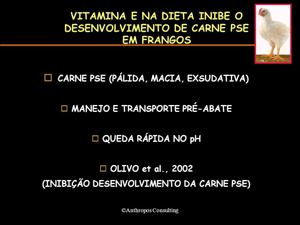 ©Anthropos Consulting VITAMINA E NA DIETA INIBE O DESENVOLVIMENTO DE CARNE PSE EM FRANGOS CARNE PSE (PÁLIDA, MACIA, EXSUDATIVA) o MANEJO E TRANSPORTE