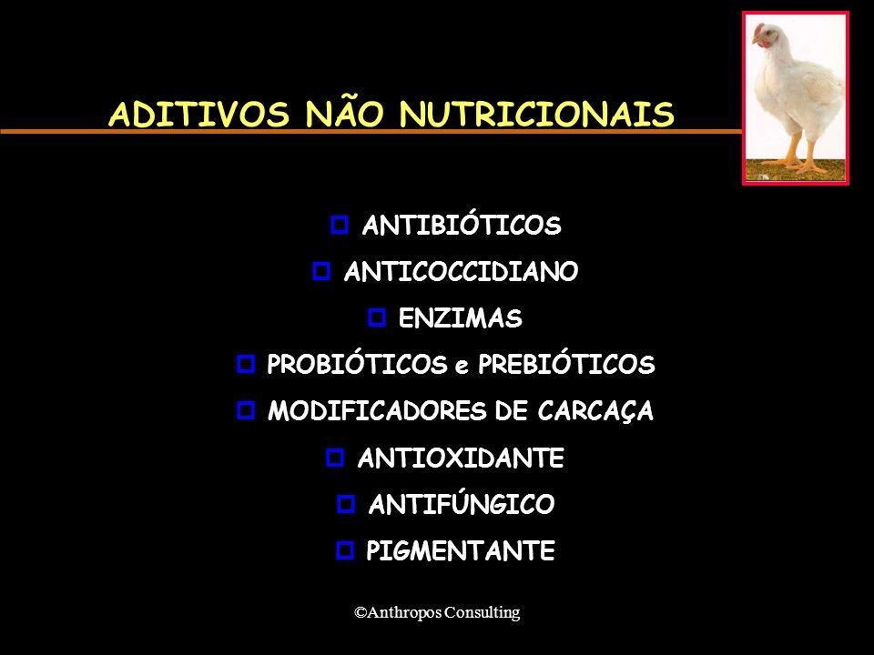 ©Anthropos Consulting ADITIVOS NÃO NUTRICIONAIS pANTIBIÓTICOS pANTICOCCIDIANO pENZIMAS pPROBIÓTICOS e PREBIÓTICOS pMODIFICADORES DE CARCAÇA pANTIOXIDANTE pANTIFÚNGICO pPIGMENTANTE