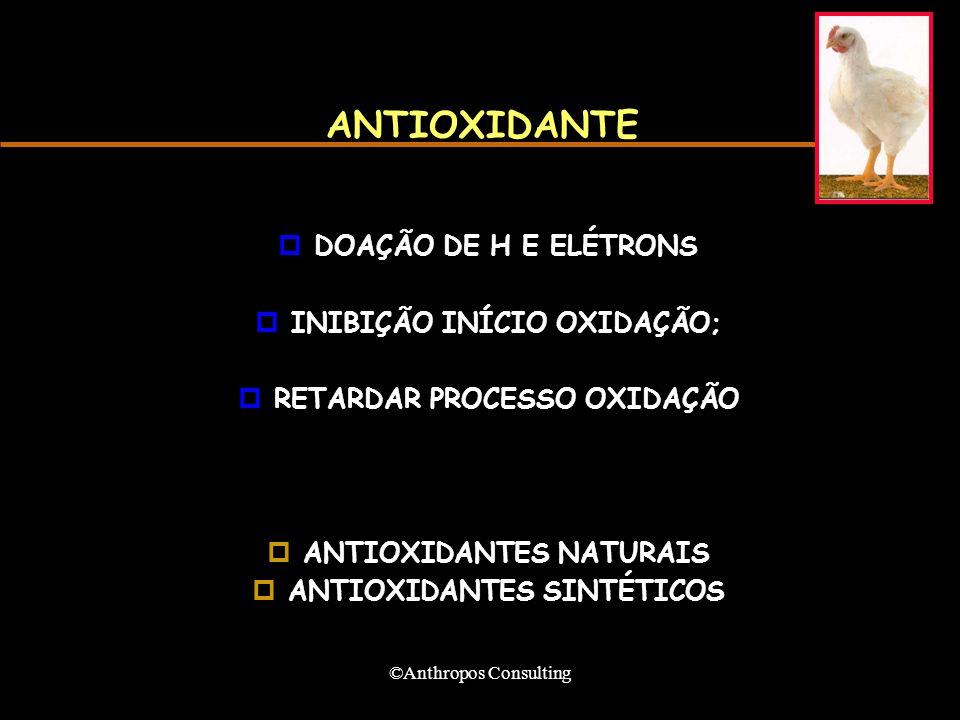 ©Anthropos Consulting ANTIOXIDANTE pDOAÇÃO DE H E ELÉTRONS pINIBIÇÃO INÍCIO OXIDAÇÃO; pRETARDAR PROCESSO OXIDAÇÃO pANTIOXIDANTES NATURAIS pANTIOXIDANTES SINTÉTICOS