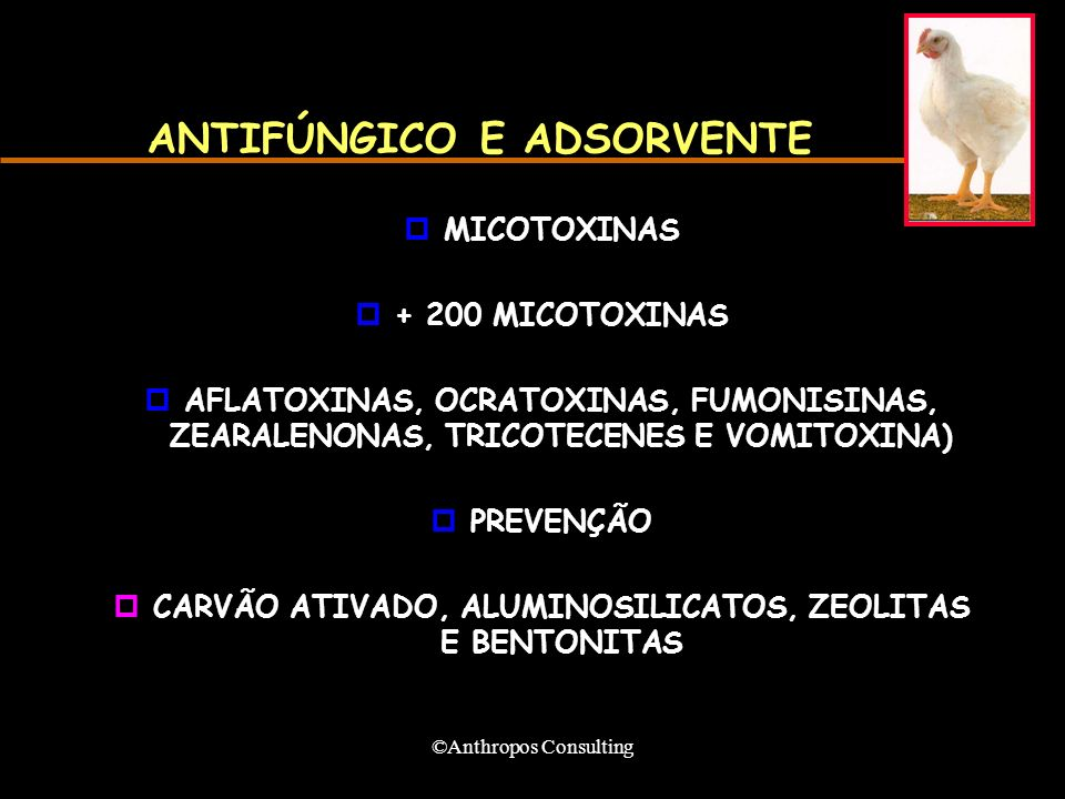 ©Anthropos Consulting ANTIFÚNGICO E ADSORVENTE pMICOTOXINAS p+ 200 MICOTOXINAS pAFLATOXINAS, OCRATOXINAS, FUMONISINAS, ZEARALENONAS, TRICOTECENES E VOMITOXINA) pPREVENÇÃO pCARVÃO ATIVADO, ALUMINOSILICATOS, ZEOLITAS E BENTONITAS