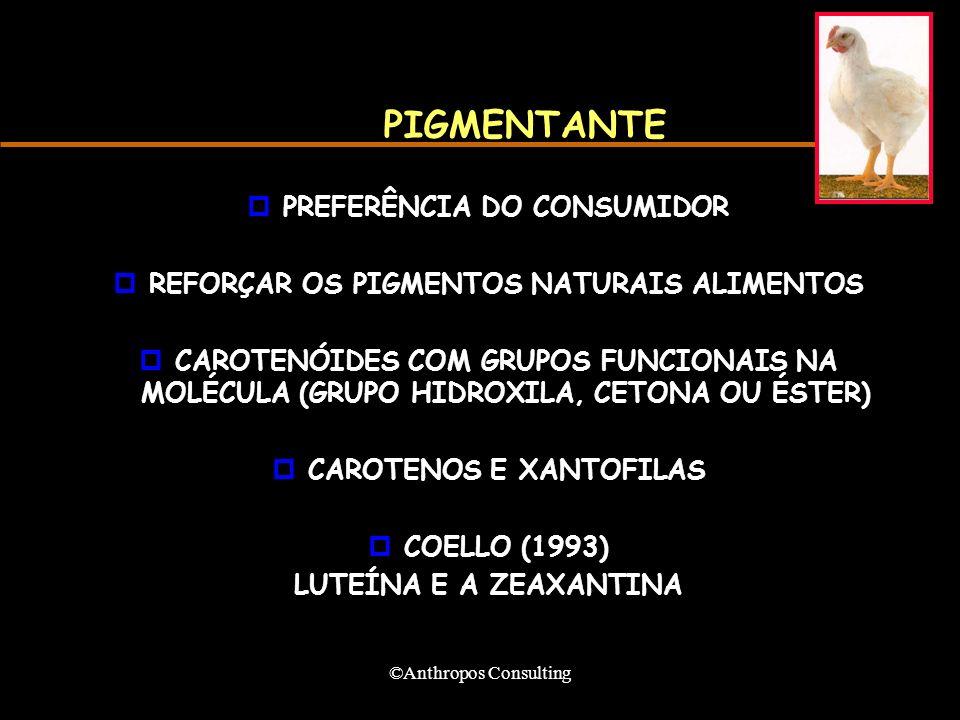 ©Anthropos Consulting PIGMENTANTE pPREFERÊNCIA DO CONSUMIDOR pREFORÇAR OS PIGMENTOS NATURAIS ALIMENTOS pCAROTENÓIDES COM GRUPOS FUNCIONAIS NA MOLÉCULA (GRUPO HIDROXILA, CETONA OU ÉSTER) pCAROTENOS E XANTOFILAS pCOELLO (1993) LUTEÍNA E A ZEAXANTINA