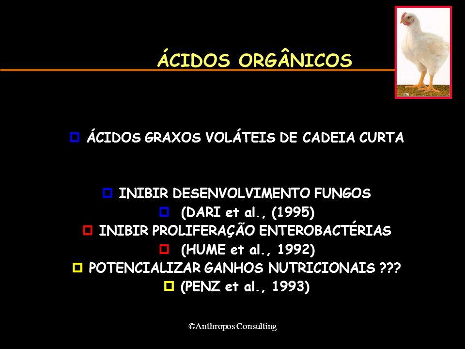 ©Anthropos Consulting ÁCIDOS ORGÂNICOS pÁCIDOS GRAXOS VOLÁTEIS DE CADEIA CURTA pINIBIR DESENVOLVIMENTO FUNGOS p (DARI et al., (1995) pINIBIR PROLIFERA
