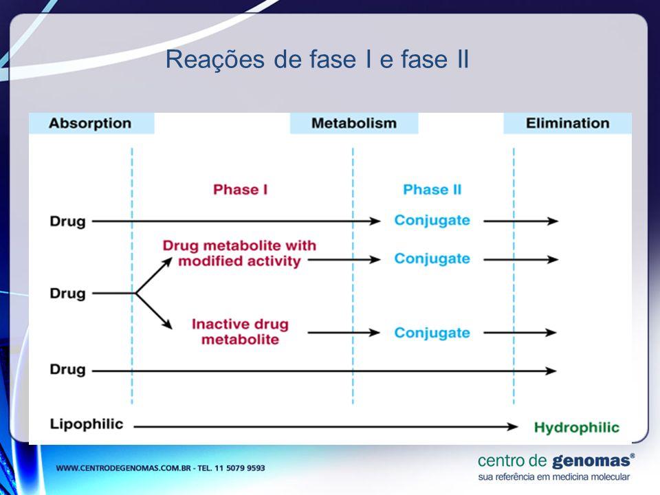 Reações de fase I e fase II