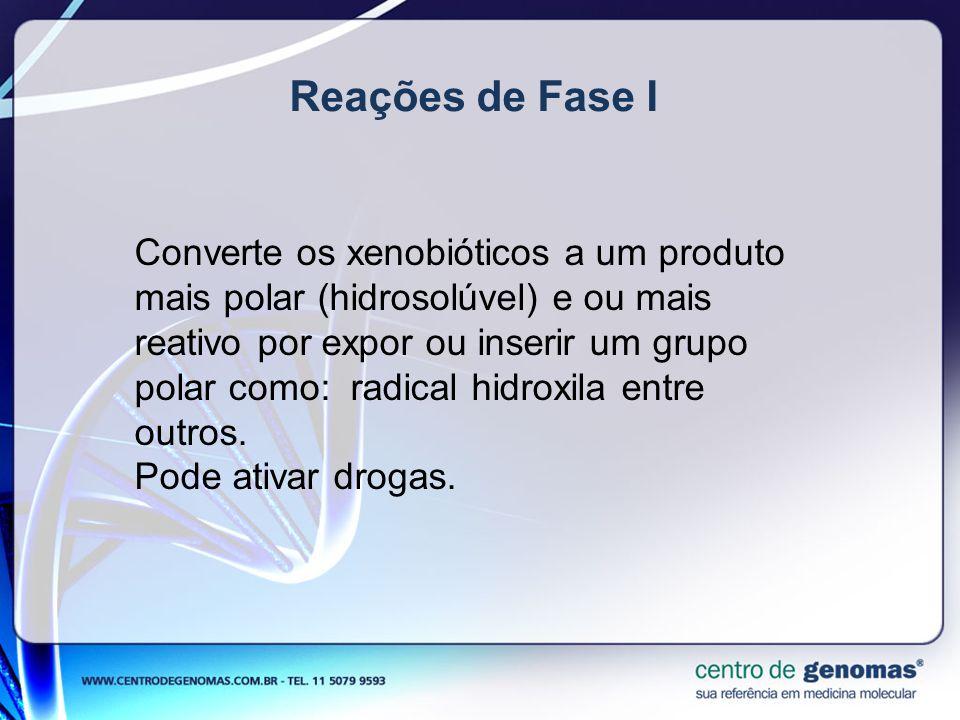 Reações de Fase I Converte os xenobióticos a um produto mais polar (hidrosolúvel) e ou mais reativo por expor ou inserir um grupo polar como: radical