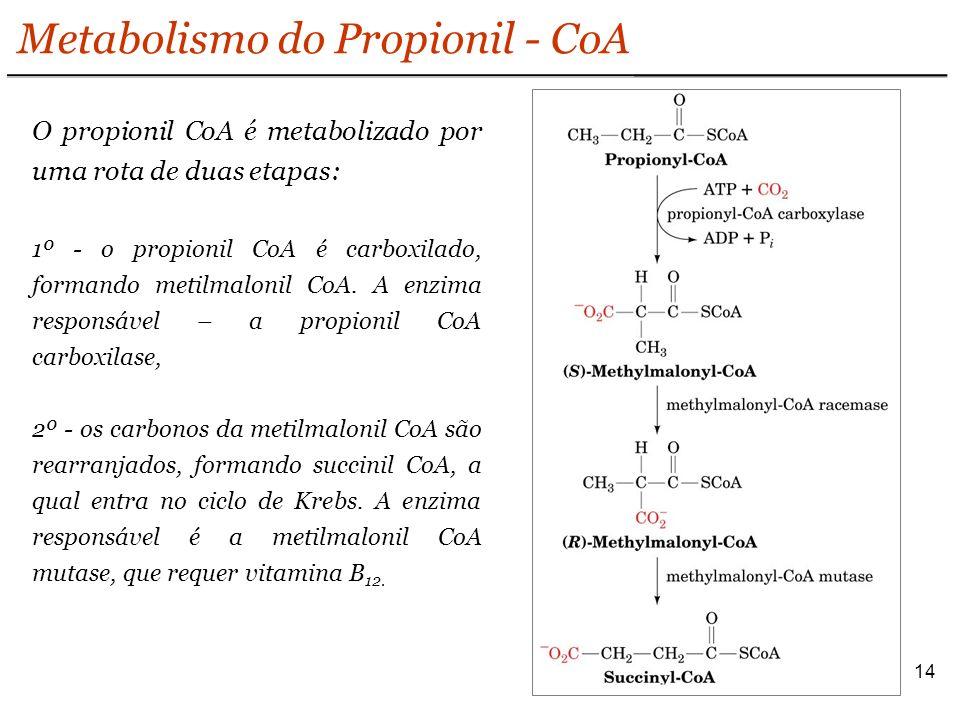 14 Metabolismo do Propionil - CoA O propionil CoA é metabolizado por uma rota de duas etapas: 1º - o propionil CoA é carboxilado, formando metilmalonil CoA.