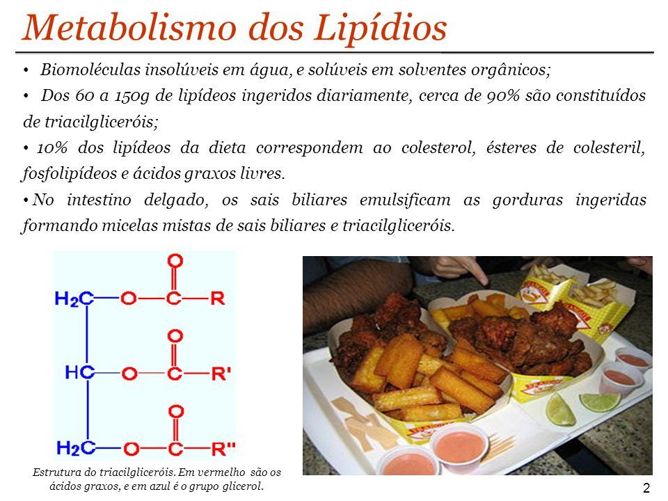 Metabolismo dos Lipídios Biomoléculas insolúveis em água, e solúveis em solventes orgânicos; Dos 60 a 150g de lipídeos ingeridos diariamente, cerca de 90% são constituídos de triacilgliceróis; 10% dos lipídeos da dieta correspondem ao colesterol, ésteres de colesteril, fosfolipídeos e ácidos graxos livres.