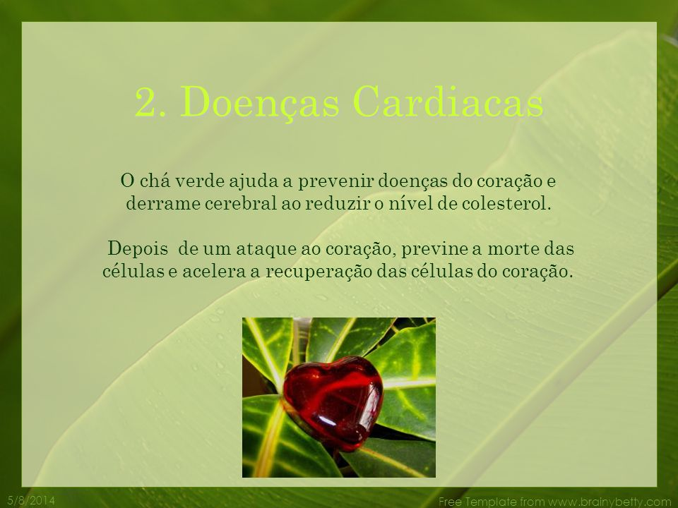 5/8/2014 Free Template from www.brainybetty.com O chá verde ajuda a prevenir doenças do coração e derrame cerebral ao reduzir o nível de colesterol.