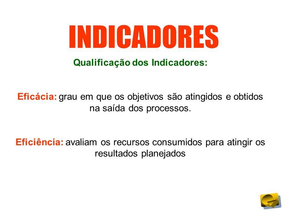 INDICADORES Qualificação dos Indicadores: Eficácia: grau em que os objetivos são atingidos e obtidos na saída dos processos. Eficiência: avaliam os re