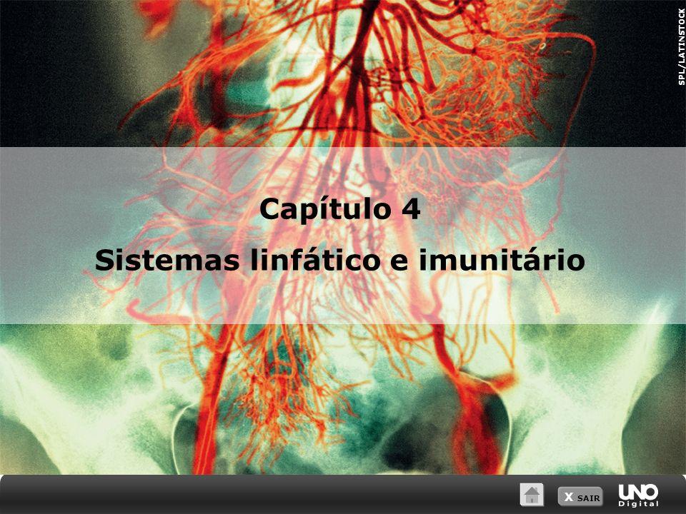X SAIR SPL/LATINSTOCK Capítulo 4 Sistemas linfático e imunitário