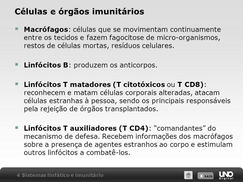 X SAIR Células e órgãos imunitários Macrófagos: células que se movimentam continuamente entre os tecidos e fazem fagocitose de micro-organismos, restos de células mortas, resíduos celulares.