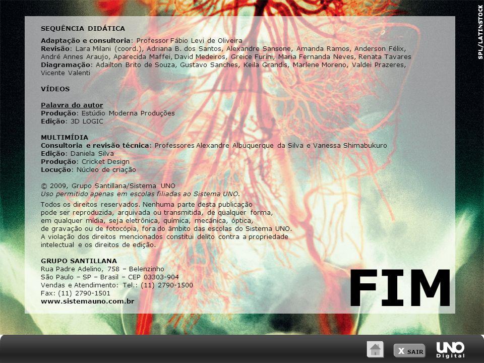 X SAIR SPL/LATINSTOCK FIM SEQUÊNCIA DIDÁTICA Adaptação e consultoria: Professor Fábio Levi de Oliveira Revisão: Lara Milani (coord.), Adriana B.