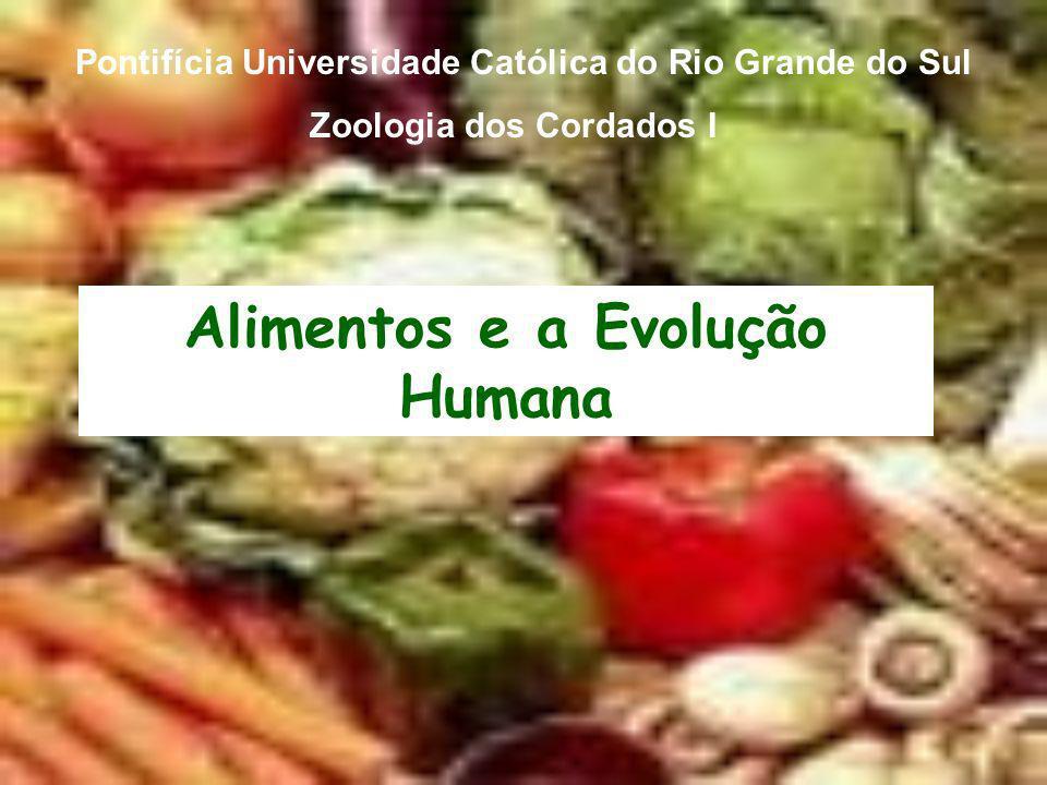 Alimentos e a Evolução Humana Pontifícia Universidade Católica do Rio Grande do Sul Zoologia dos Cordados I