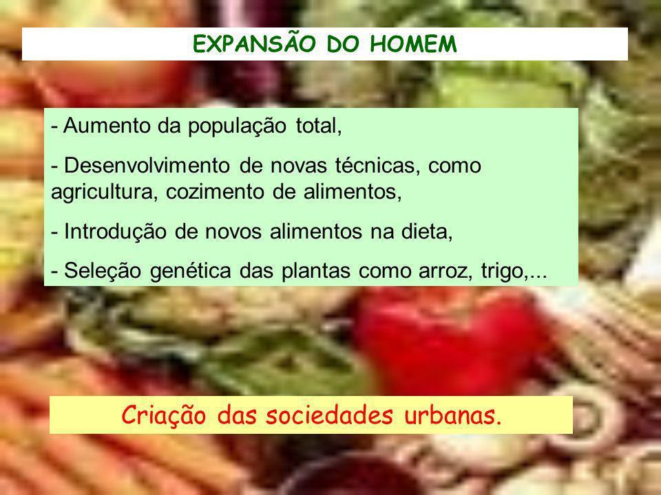 EXPANSÃO DO HOMEM - Aumento da população total, - Desenvolvimento de novas técnicas, como agricultura, cozimento de alimentos, - Introdução de novos a
