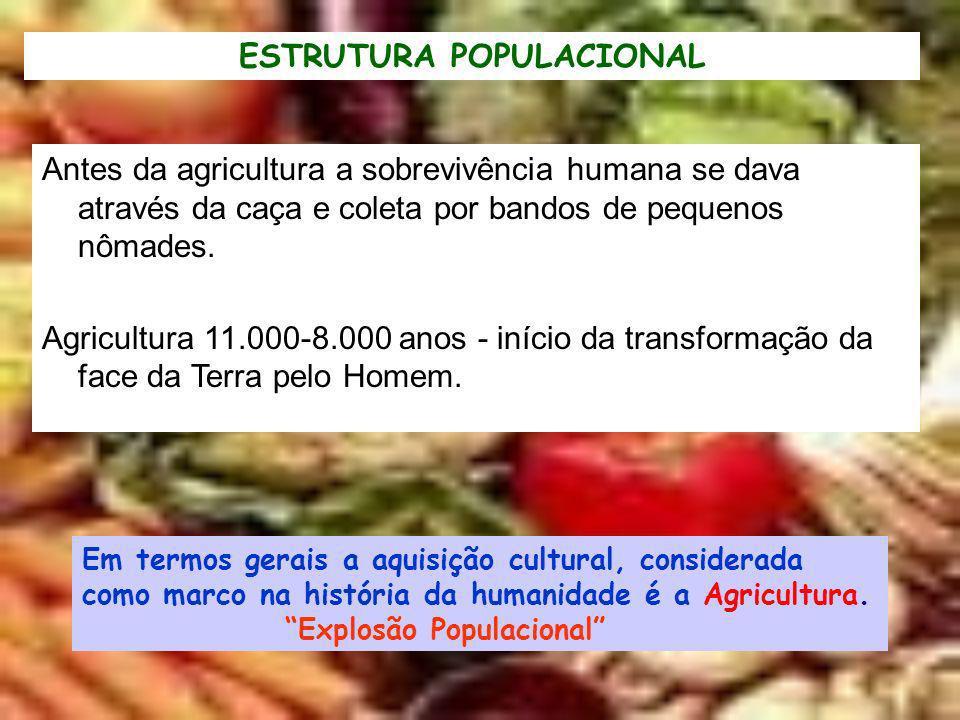 Antes da agricultura a sobrevivência humana se dava através da caça e coleta por bandos de pequenos nômades. Agricultura 11.000-8.000 anos - início da