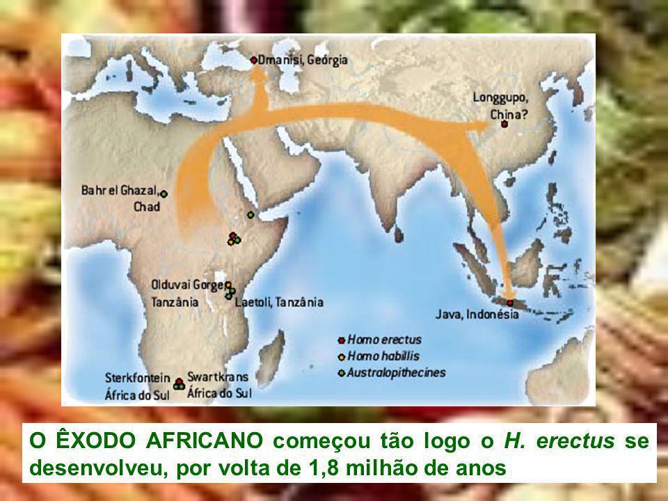 O ÊXODO AFRICANO começou tão logo o H. erectus se desenvolveu, por volta de 1,8 milhão de anos