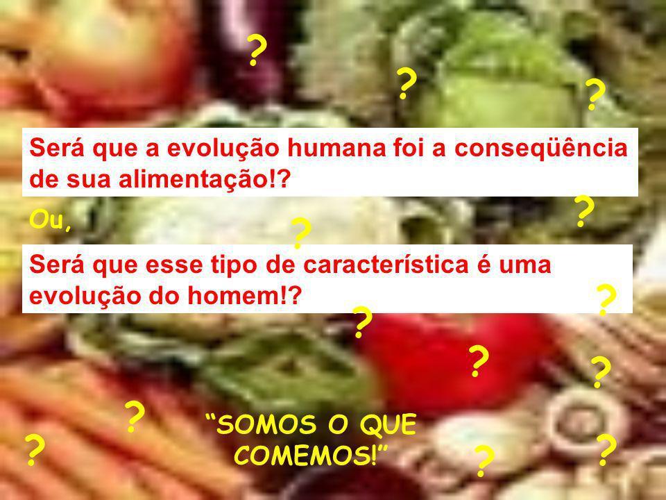 Será que a evolução humana foi a conseqüência de sua alimentação!? Será que esse tipo de característica é uma evolução do homem!? Ou, SOMOS O QUE COME