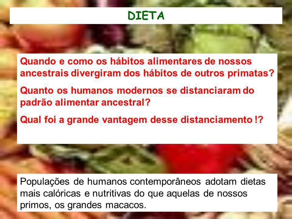 Populações de humanos contemporâneos adotam dietas mais calóricas e nutritivas do que aquelas de nossos primos, os grandes macacos. Quando e como os h