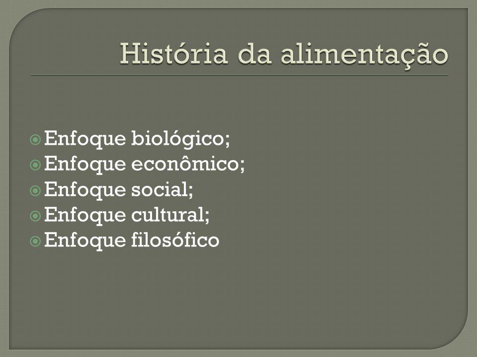 Enfoque biológico; Enfoque econômico; Enfoque social; Enfoque cultural; Enfoque filosófico